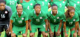 Government didn't expect Falcons to win AWCON, says Sports Minister