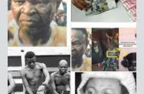 Image result for Otokoto Suspect